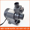 May Bom Chim Ho Ca Loc Nuoc Bom Oxy HJ 721