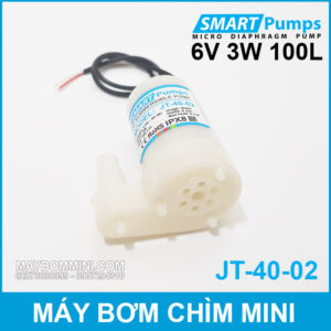 May Bom Chim Mini 6V 3W 100L Smartpumps JT 40 02