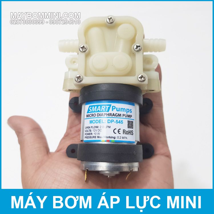 Ban May Bom Nuoc Mini Ap Luc 12V DP 545