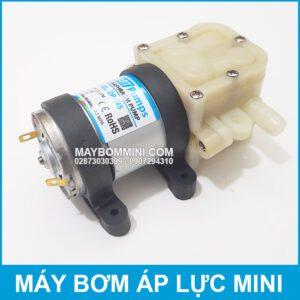 Bom Nuoc Mini DP 545 Smartpumps