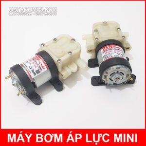 Micro Diaphragm Pump Smartpumps DP 545 24V