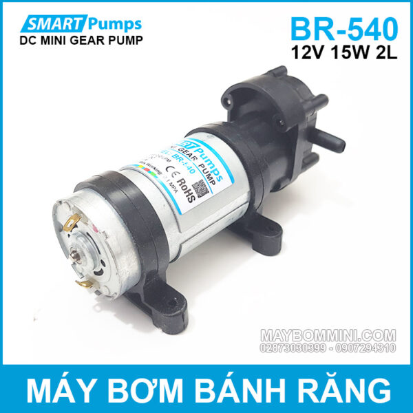 Bom Banh Rang 12V DP540 Smartpumps