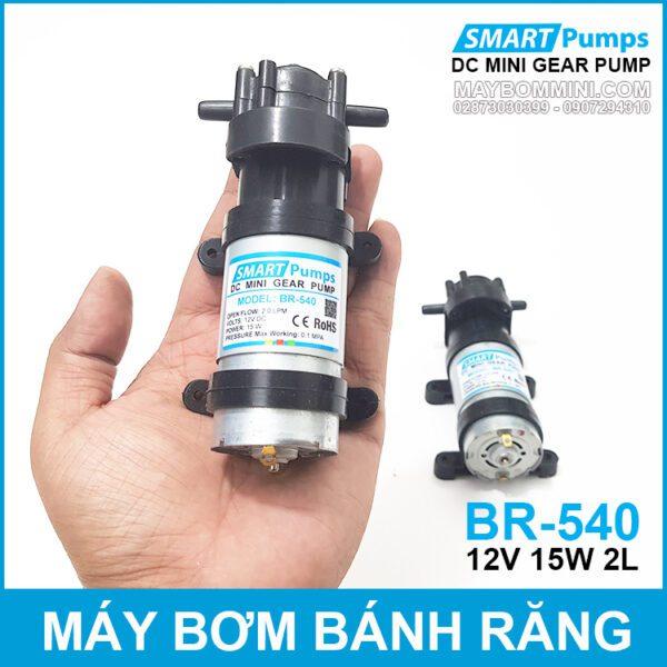 Bom Nuoc Mini Banh Rang 12V DP 540