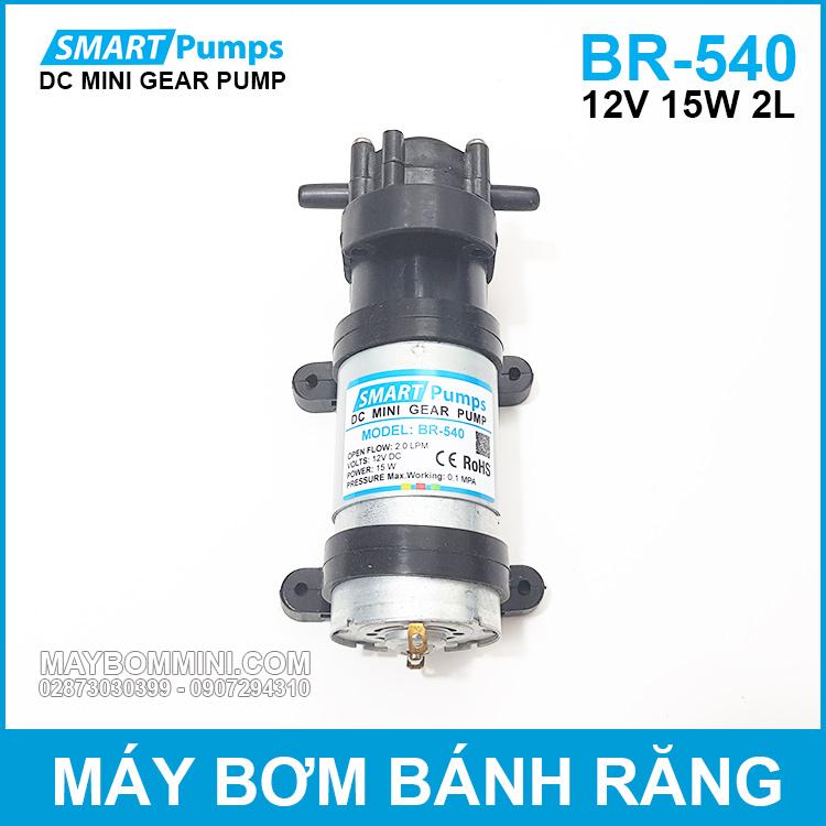 May Bom Banh Rang 12v 15w 2l DP 540 Smartpumps