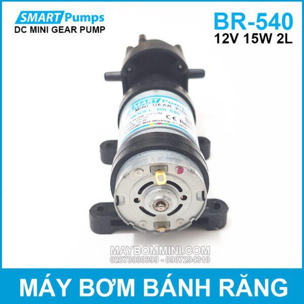 Ban May Bom Banh Rang Mini 12V DP 540