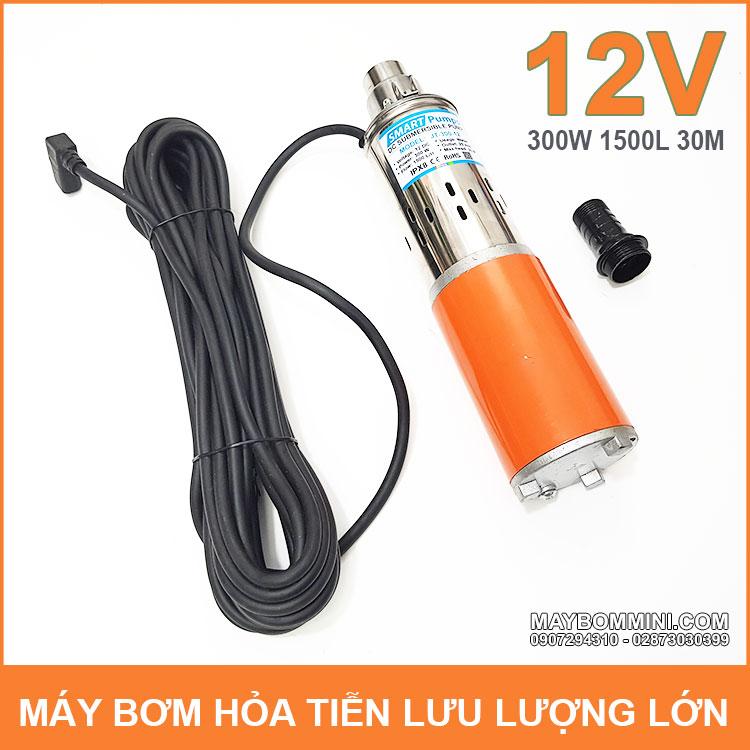 May Bom Chim 12V 300W 2500L JT 300 Smartpumps