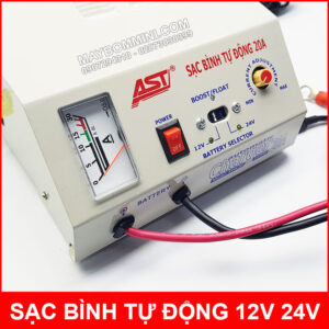 Automatic Charger 20A 12V 24V