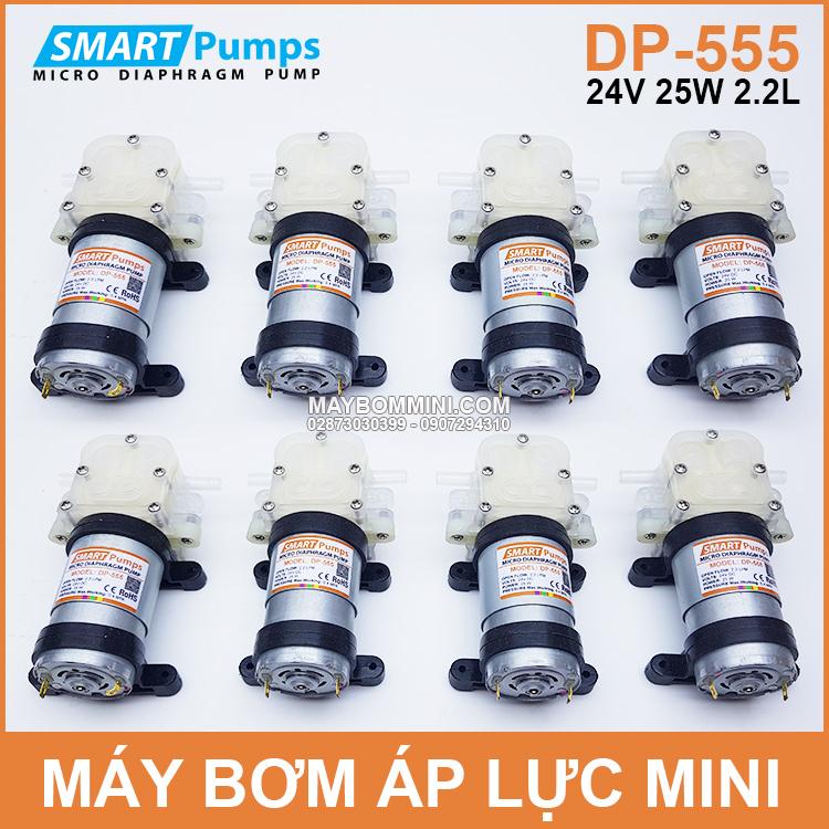 Ban Bom Nuoc Mini 24v DP 555