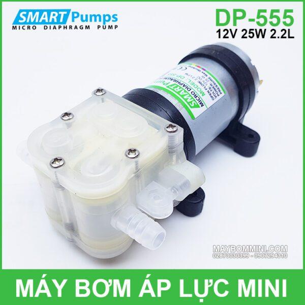 Bom Nuoc Nho Mini 12v Dp 555